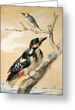 A Great Spotted Woodpecked And Another Small Bird Greeting Card