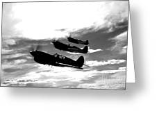 A Group Of P-40 Warhawks Fly Greeting Card