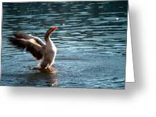 A Happy Goose Greeting Card