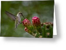 A Happy Little Hummer  Greeting Card