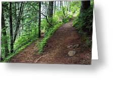 A Hiking Trail Goes Up Saddle Mountain Greeting Card