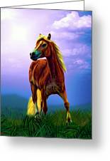 A Horse Called Sheba Greeting Card