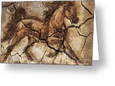 A Horse - Cave Art Greeting Card