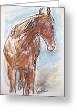 A Horse Looks Back Greeting Card