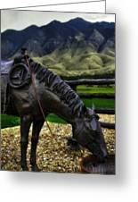 A Horse With No Name Greeting Card