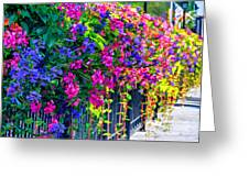 A Journey Thru Color  Greeting Card