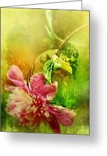 A Kiss Before Sunset Greeting Card
