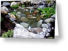 A Koi Pond For Outdoor Garden Greeting Card