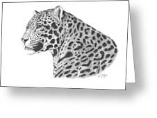 A Leopard's Watchful Eye Greeting Card