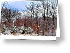 A Light Dusting Greeting Card
