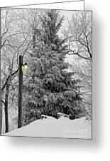 A Light Snow Greeting Card