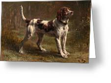 A Limier Briquet Hound Greeting Card