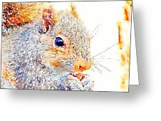 A Little Bit Squirrely Greeting Card