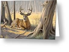 'a Little Shade' Greeting Card