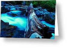A Log Over Rapids Greeting Card