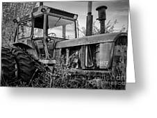 A Lonsome Deere Greeting Card