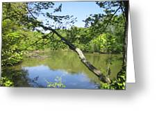 A Look At Lake Greeting Card