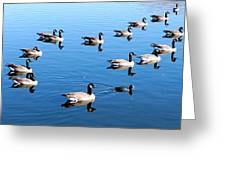 A Lot Of Geese Greeting Card