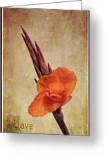 A Loving Gladiolus Greeting Card