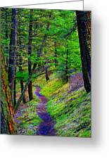 A Magical Path To Enlightenment Greeting Card
