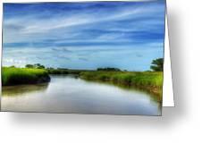 A Marsh At Jekyll Island Greeting Card