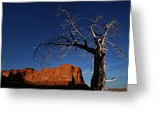 A Mesquite Trees And Buttes Greeting Card