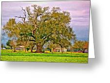 A Mighty Oak - Paint Greeting Card
