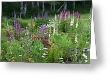 A Mixture Of Flowers Bloom In Hillside Greeting Card