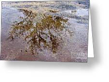 A Monet Moment IIi Greeting Card