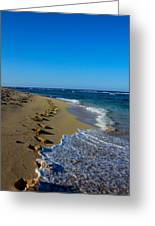 A Morning Walk On A Dominican Beach Greeting Card
