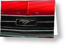 A Mustang  Greeting Card