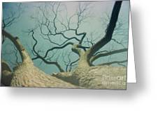 A Naked Tree Greeting Card