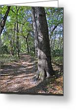 A Nature Walk Greeting Card