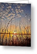 A New Day Begins ... Greeting Card