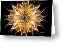 A New Year's Star 2014 Greeting Card
