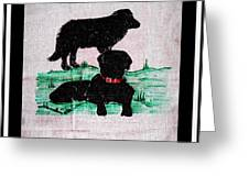 A Newfoundland Dog And A Labrador Retriever Greeting Card
