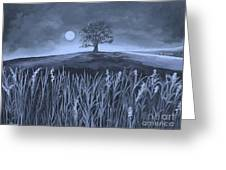 A Night At The Plains Greeting Card