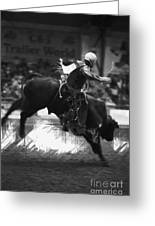 A Night At The Rodeo V4 Greeting Card