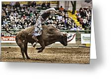 A Night At The Rodeo V8 Greeting Card
