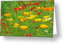 A Painting Tuscan Poppies Greeting Card