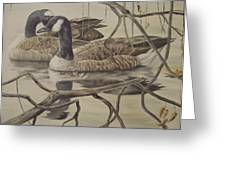 A Pair Of Ducks Greeting Card