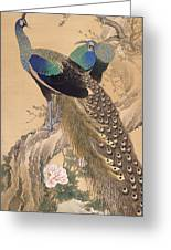 A Pair Of Peacocks In Spring Greeting Card