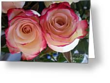 A Pair Of Roses  Greeting Card