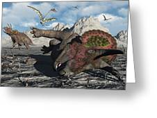A Pair Of Triceratops Trapped Greeting Card