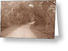 A Path In Life Greeting Card