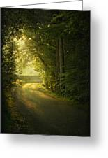 A Path To The Light Greeting Card