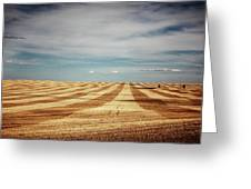 A Pattern Of Stripes Across A Farmers Greeting Card