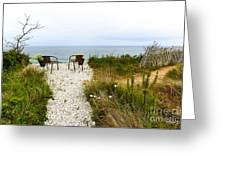 A Peaceful Respite By The Shore Greeting Card