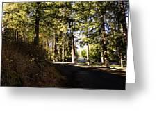 A Peaceful Walk Greeting Card