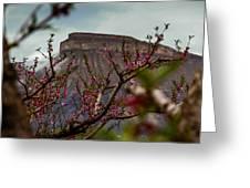 A Peak At Mt. Garfield Greeting Card